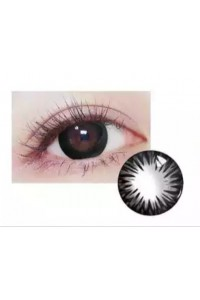 Sunflower Circle Yıllık Lens